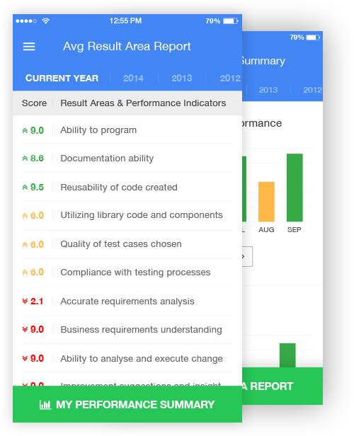 result areas and performance indicators